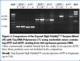 Taq Polymerase Biocompare Images