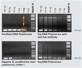 Photos of Taq Polymerase Applied