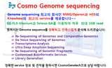 Images of Taq Polymerase Length