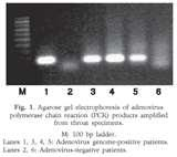 Taq Polymerase Journal Pictures